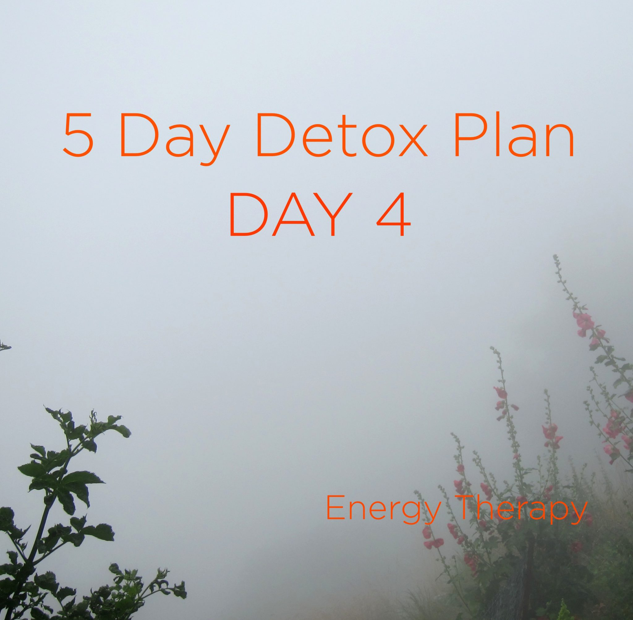 Five Day [Soft] Detox AlbinenMist