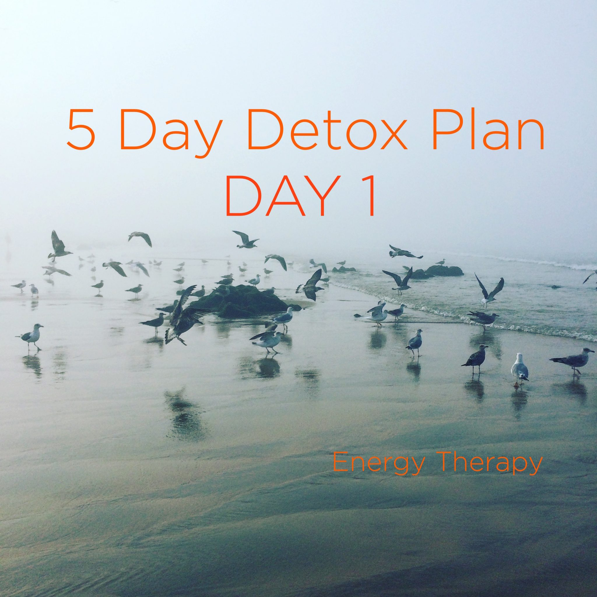 Five Day [Soft] Detox BirdsBeachMatos copy 2