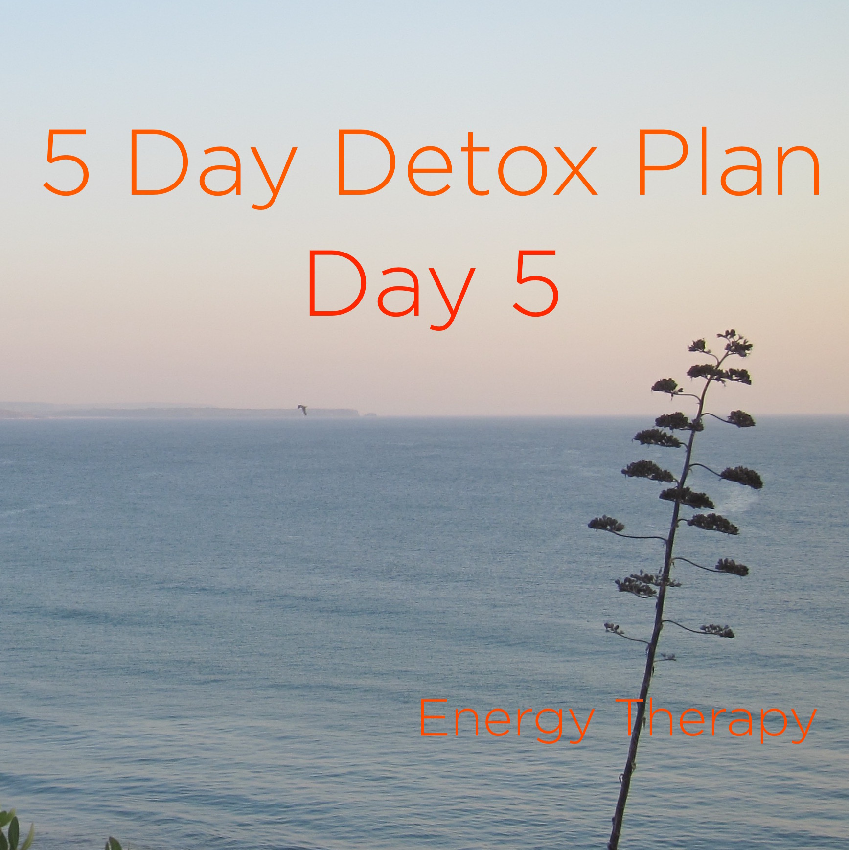 Five Day [Soft] Detox Day 5