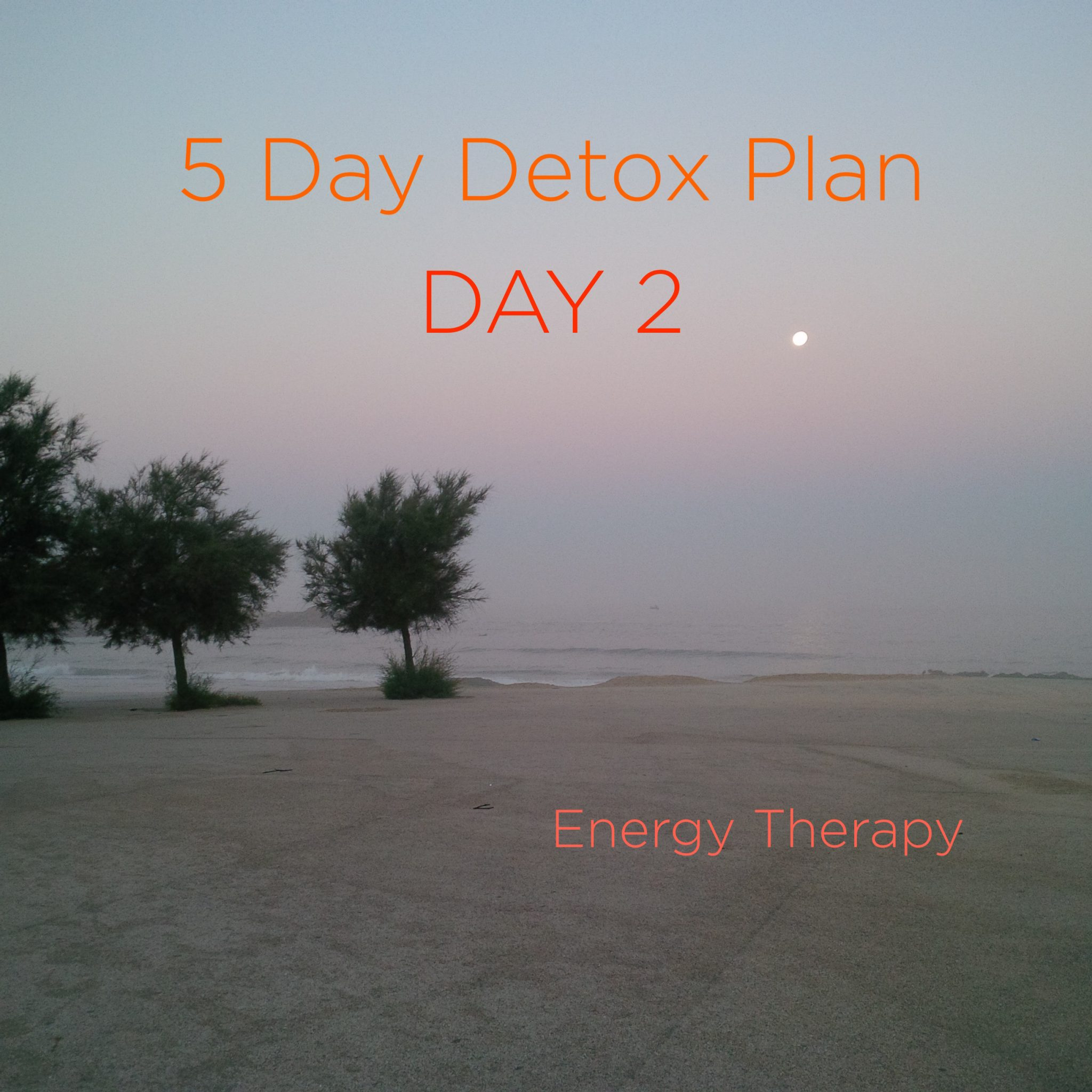 Five Day [Soft] Detox PlageMatos copy