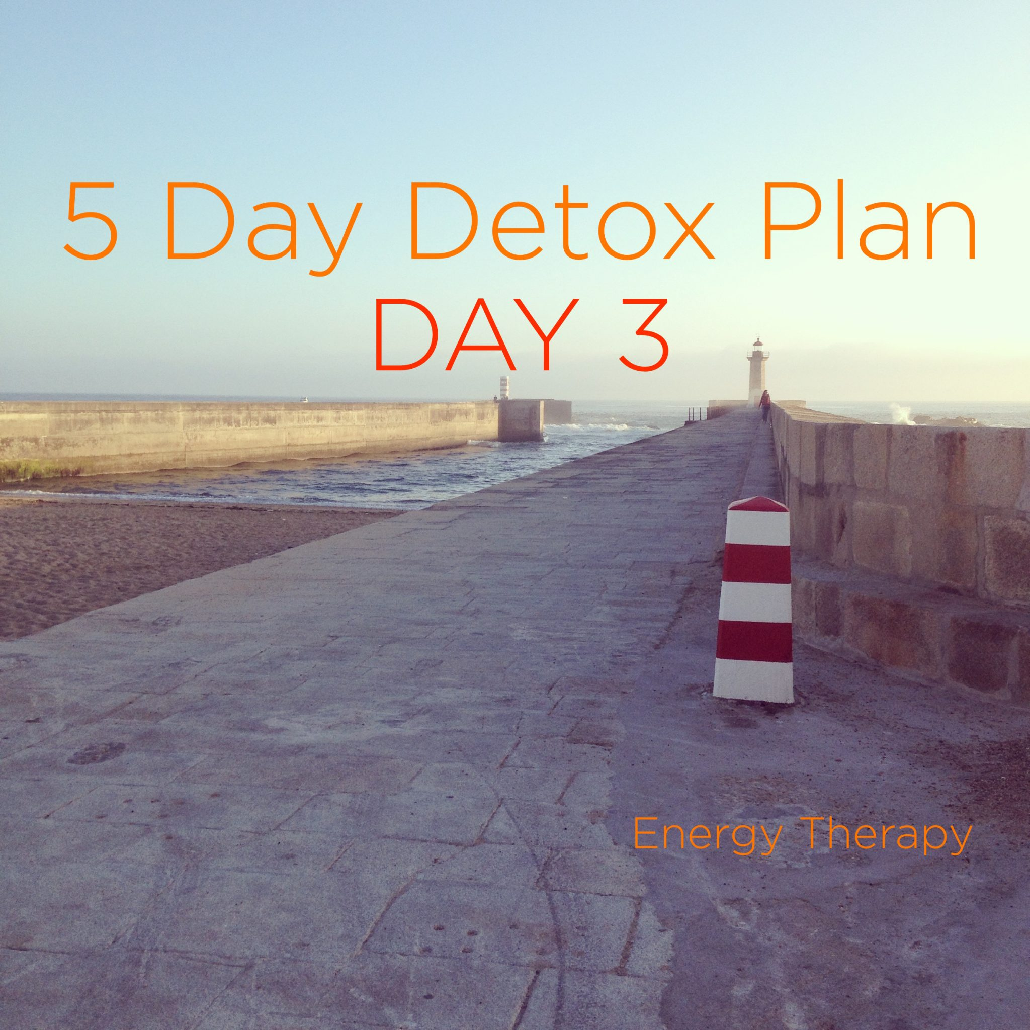 Five Day [Soft] Detox PortoPhare Day 3